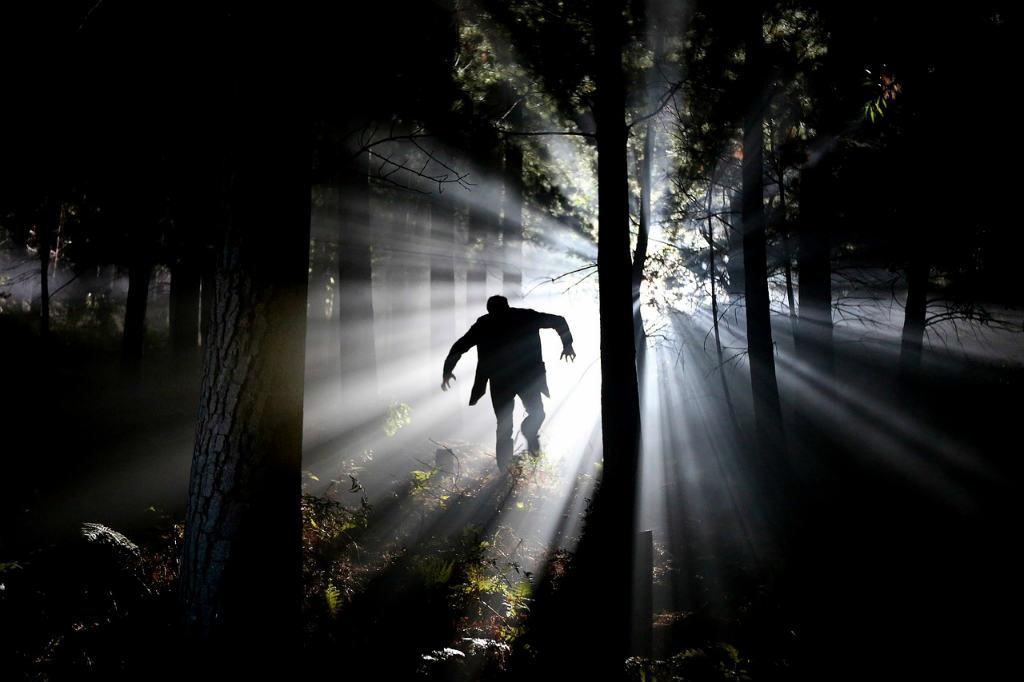 森を走るフランケンシュタイン