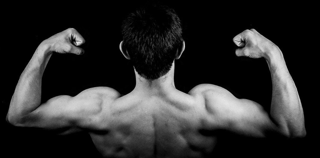 鍛えられた筋肉