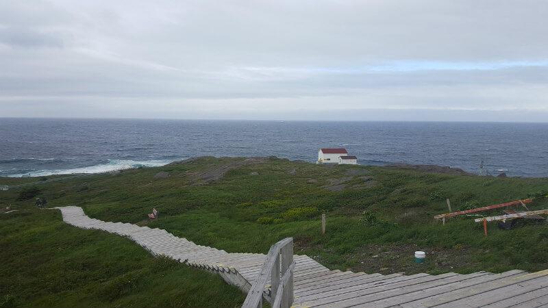 ニューファンドランド島