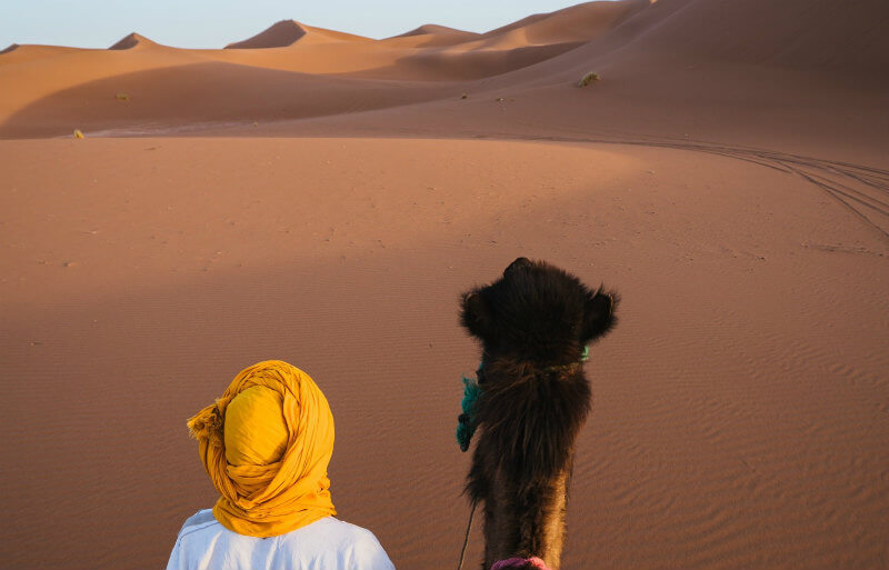 砂漠を旅する女性とラクダ