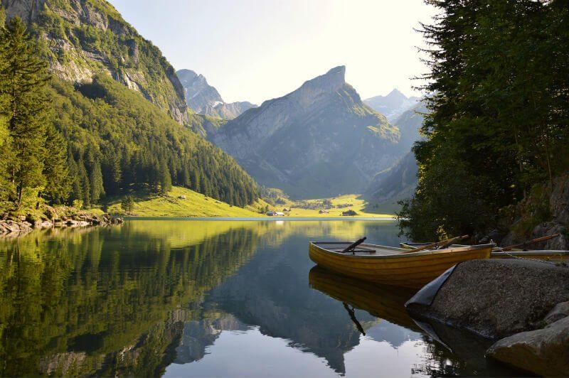 木と湖のある風景