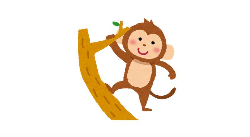 木登りしている猿